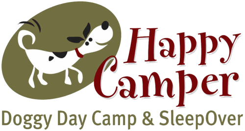 Image result for Happy Camper Doggy Day Camp & SleepOver